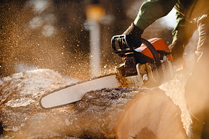 Chainsaw. Close-up of woodcutter sawing