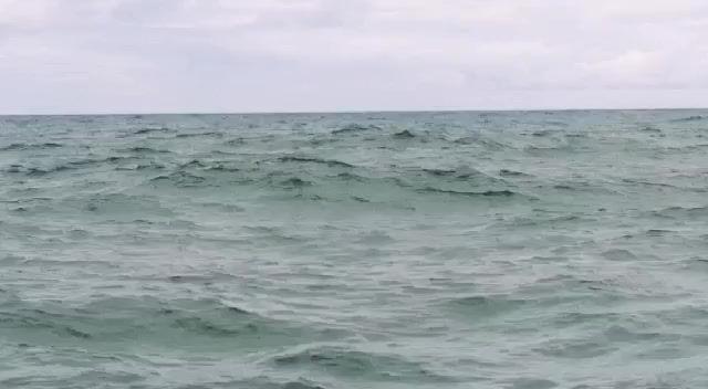 Concientizando el Avistamiento de Ballenas en el Pacifico