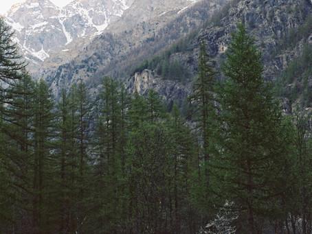 De (berg)weg naar jezelf