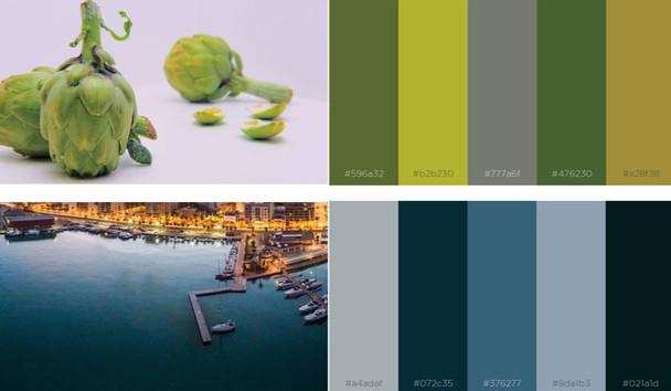paleta-color editado.jpg