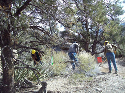 trail work2