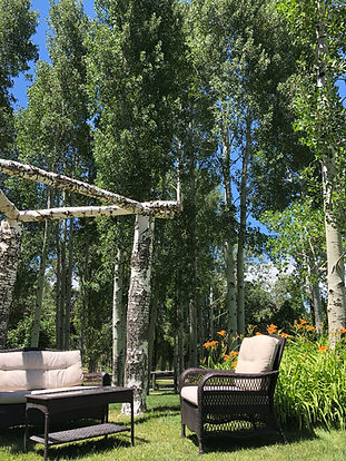 arbor with chairs 1.jpg