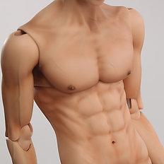 Male body 70Adagio