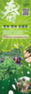 綠竹園山薯農場-春季-拔蘿蔔