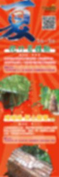 綠竹園山薯農場-夏季-挖竹荀