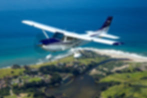 Cessna_Skylane_5.jpg