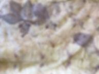 various leaves including rose.jpeg
