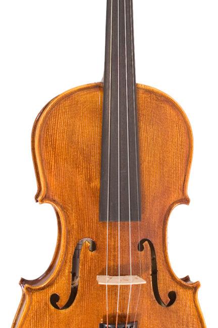 Hidersine Piacenza Violin 4/4 Finetune Outfit - W3191