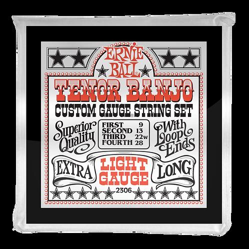 2306 | ERNIE BALL LIGHT LOOP END STAINLESS STEEL TENOR BANJO STRINGS 9-28
