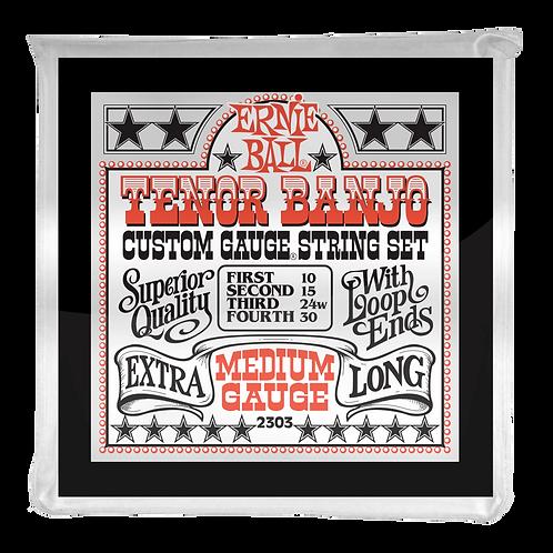 2303 | ERNIE BALL MEDIUM LOOP END STAINLESS STEEL TENOR BANJO STRINGS 10-30