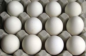 egg_carton.jpg