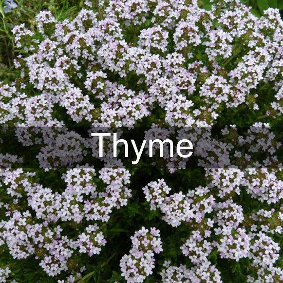 Thyme Essential Oil 10ml Roller