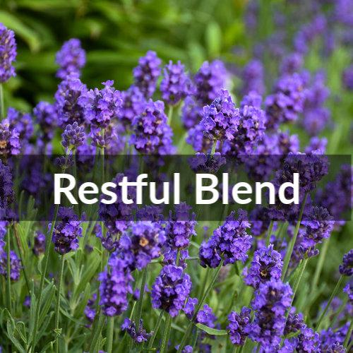 Restful Blend Essential Oil 10ml Roller