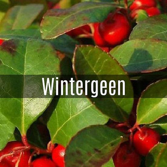 Wintergreen Essential Oil 10ml Roller