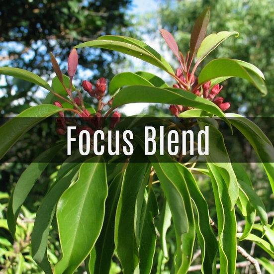 Focus Blend Essential Oil 10ml Roller