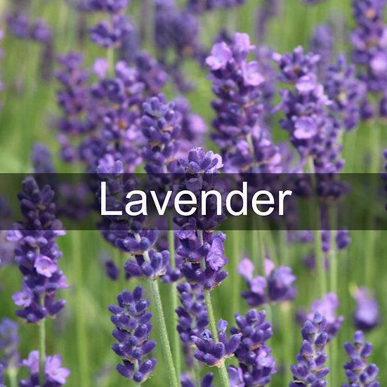 Lavender Essential Oil 10ml Roller