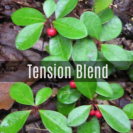 Tension Blend Essential Oil 10ml Roller