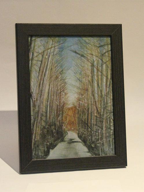 Towards Green Lake Art Print