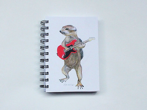 Squirrel with guitar