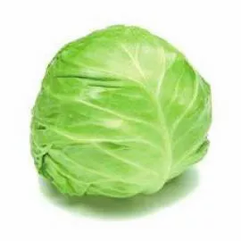 Beijing Cabbage