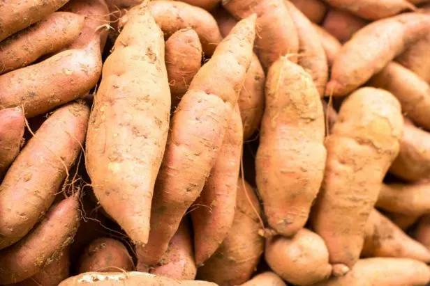 indo sweet potato
