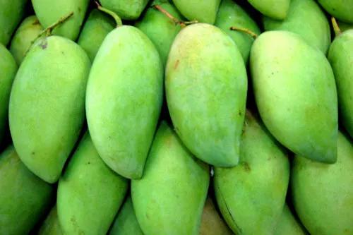 green-mango-500x500