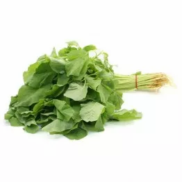 msia baby round spinach
