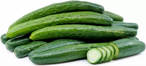 Jap Cucumber
