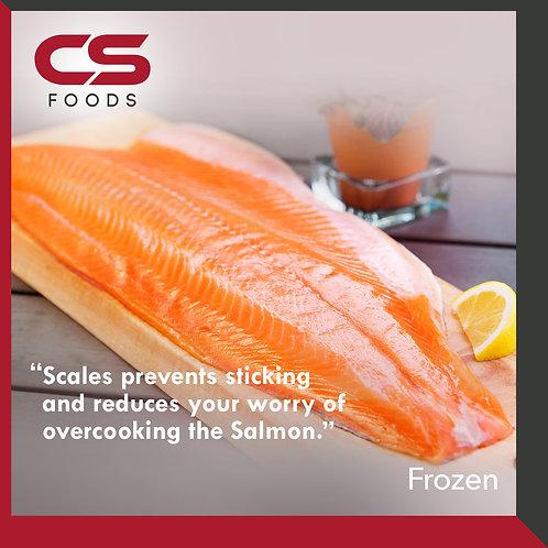 Frozen Salmon Fillet (C Trim)