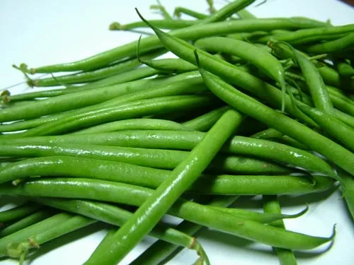 small french bean