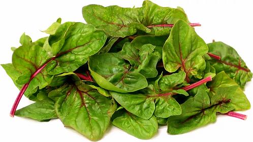Malaysia Malabar Spinach
