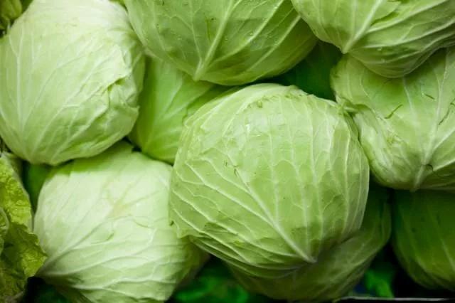 cameron cabbage