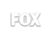 FOX-TV-logo-880x660 with Drop Shadow.png