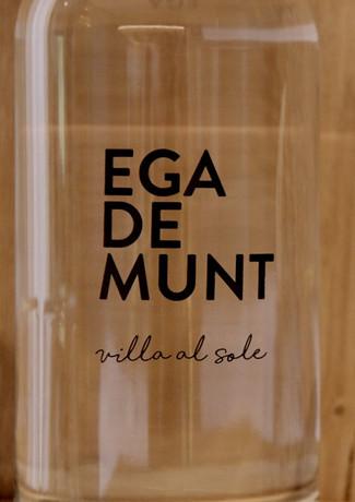 EGA DE MUNT - mountain tap water