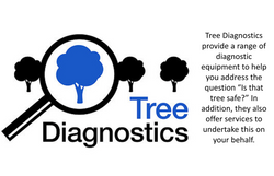 treediag&words