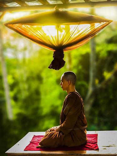 adult-asian-bald-buddhism-372281.jpg