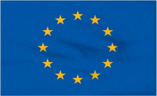 EXPERT VOICE TUITION (EUR)