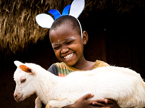Give 1 Dairy Goat, training and vet care