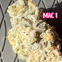 MAC 1 WS.png