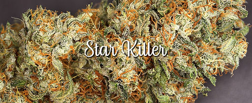 STAR KILLER 1.jpg