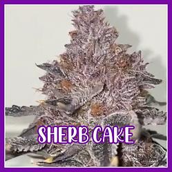 SHERB CAKE NNN.png