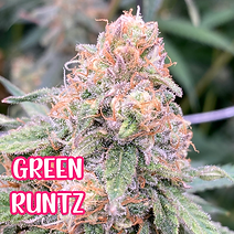 GREEN RUNTZ BB.png