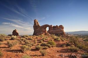 Moab Majesty