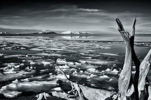 Yelowstone Lake Ice Flow