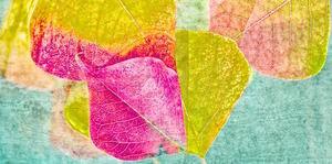Leaves in Teal