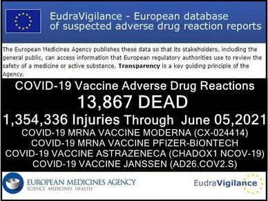 13.867 Tote und 1.354.336 Verletzte in der europäischen Datenbank