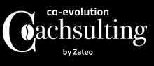 logo coevolution Coachsulting simple (1)