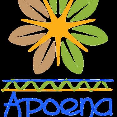 Logo apoena vertical png.png