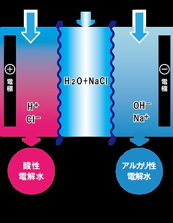 電解水生成_三室型.png