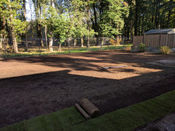 Grading and Rolling Lawn